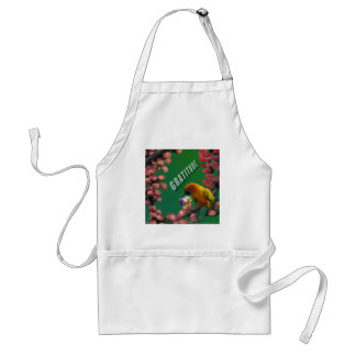My deepest thanks to you. standard apron