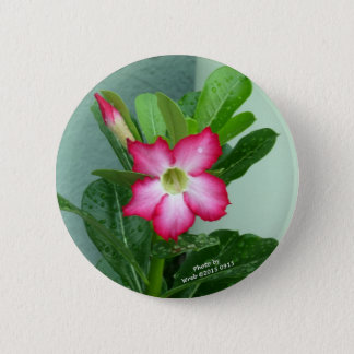 My Desert Rose 6 Cm Round Badge