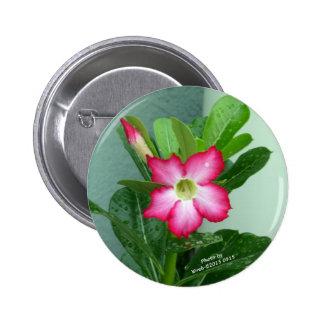 My Desert Rose 6 Cm Round Badge