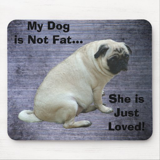 My Dog is Not Fat Pug Mousepad