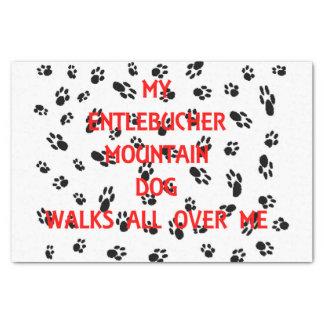 my entlebucher walks on me tissue paper