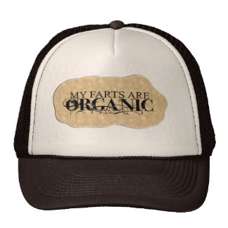 MY FARTS ARE ORGANIC CAP