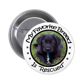 My Favorite Breed Is Rescued Button