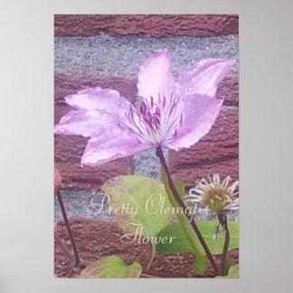 My Garden Lilac Pink Clematis Flower Poster
