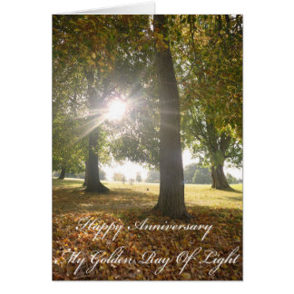 My Golden Ray Of Light Anniversary Card