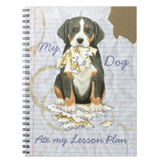 My GSMD Ate My Lesson Plan Notebook