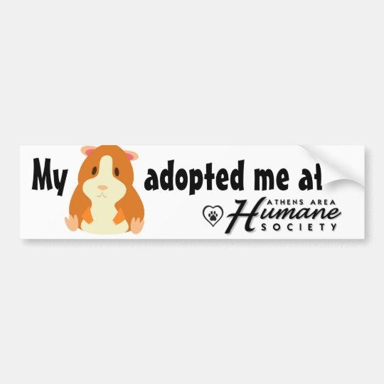 My hamster adopted me bumper sticker