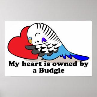 My heart belongs to a blue budgie poster
