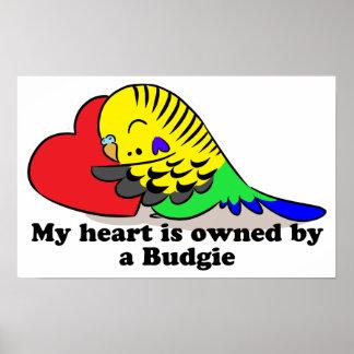 My heart belongs to a green budgie poster