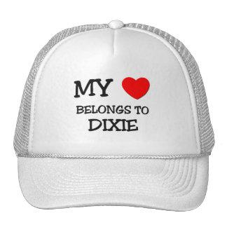 My Heart Belongs To DIXIE Mesh Hats
