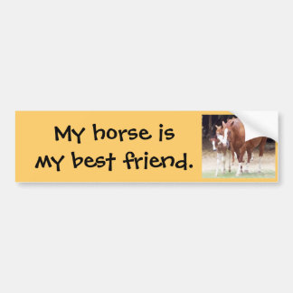 My horse is my best friend sticker bumper sticker