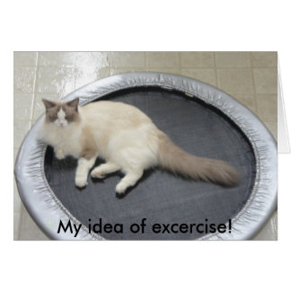 My idea of excercise! greeting card