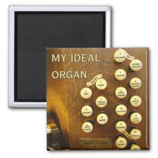 My ideal organ magnet