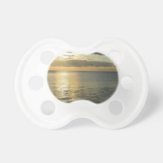 My impressions of Holland Baby Pacifiers