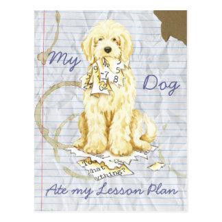My Komondor Ate My Lesson Plan Postcard