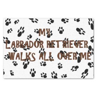 my lab walks on me tissue paper