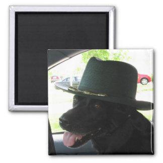 My Labrador Square Magnet