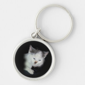 My lil Kitten Keychain- personalize Key Ring