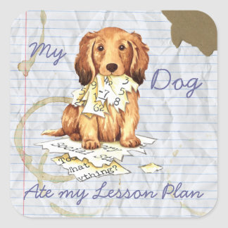 My Longhaired Dachshund Ate my Lesson Plan Square Stickers
