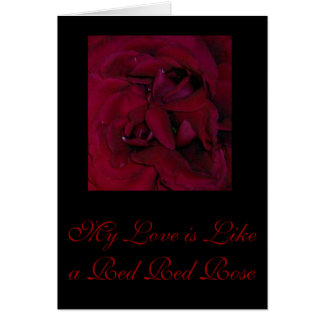 My Love is Like a Red Red Rose Card