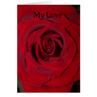 my love red rose close up greeting card