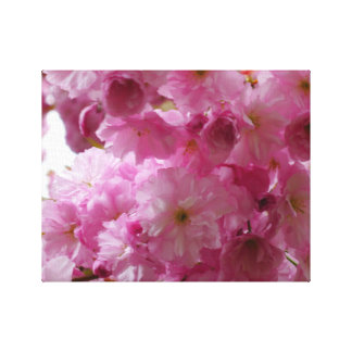 My love sakura canvas print