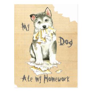 My Malemute Ate My Homework Postcard