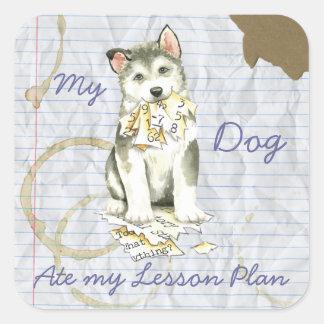 My Malemute Ate My Lesson Plan Square Sticker