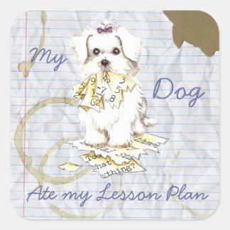 My Maltese Ate My Lesson Plan Square Sticker