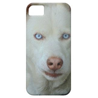 My Mona lisa eyes iPhone 5 Cases