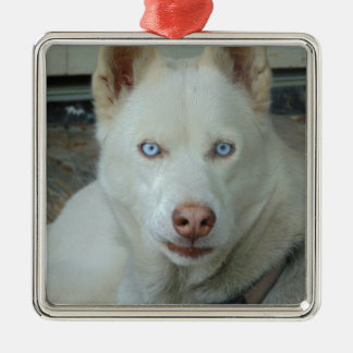 My Mona lisa eyes Metal Ornament