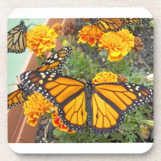 My Monarch Butterflies-cork coaster