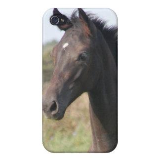 My New Pony iPhone 4/4S Covers