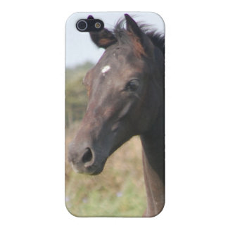 My New Pony Cover For iPhone 5/5S