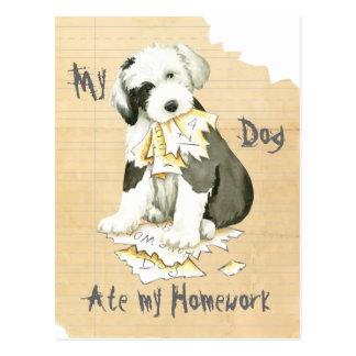 My Old English Sheepdog Ate My Homework Postcard