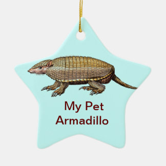My Pet Armadillo - Cute Cuddly - YES Christmas Ornaments