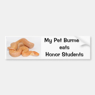 My Pet Burmese Eats Honor Students Bumper Sticker