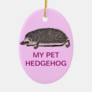 MY PET HEDGEHOG - You Should Get One Christmas Ornaments