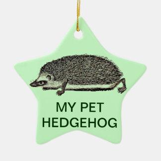 MY PET HEDGEHOG - You Should Get One Christmas Ornament