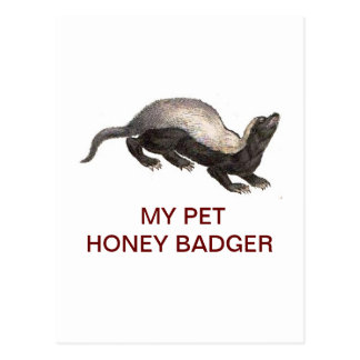 MY PET HONEY BADGER POST CARDS