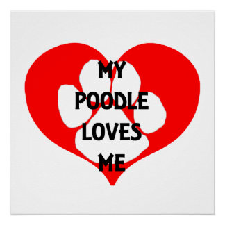 my poodle loves me poster