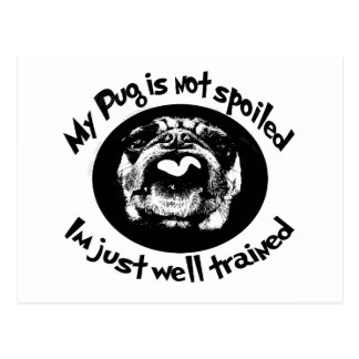My Pug Is Not Spoiled Postcard