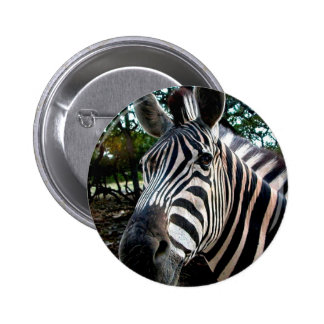 My  Strippy Friend 6 Cm Round Badge