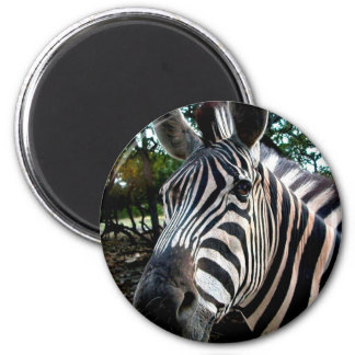 My  Strippy Friend 6 Cm Round Magnet