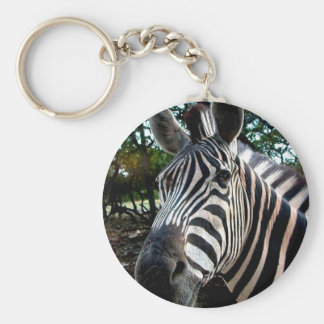 My  Strippy Friend Basic Round Button Key Ring
