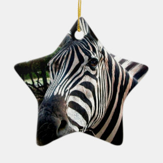 My  Strippy Friend Ceramic Star Decoration