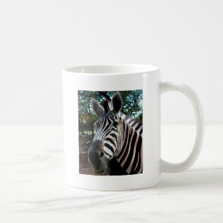 My  Strippy Friend Coffee Mug