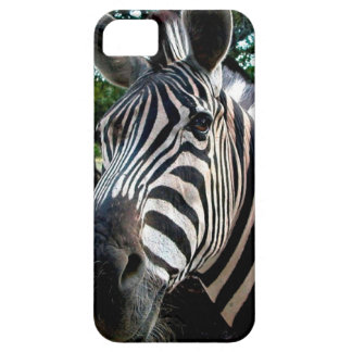 My  Strippy Friend iPhone 5 Cover