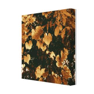 My Sweet Autumn Leaves Canvas Print