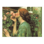 My Sweet Rose (Soul of the Rose) by Waterhouse Post Card